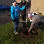 Lewis planting a Tower of Glamis Apple tree near where he lives. It is a Scottish variety and dates back to pre 1800