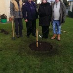 Planting fruit trees in Wingate