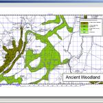 Print Woodland Map