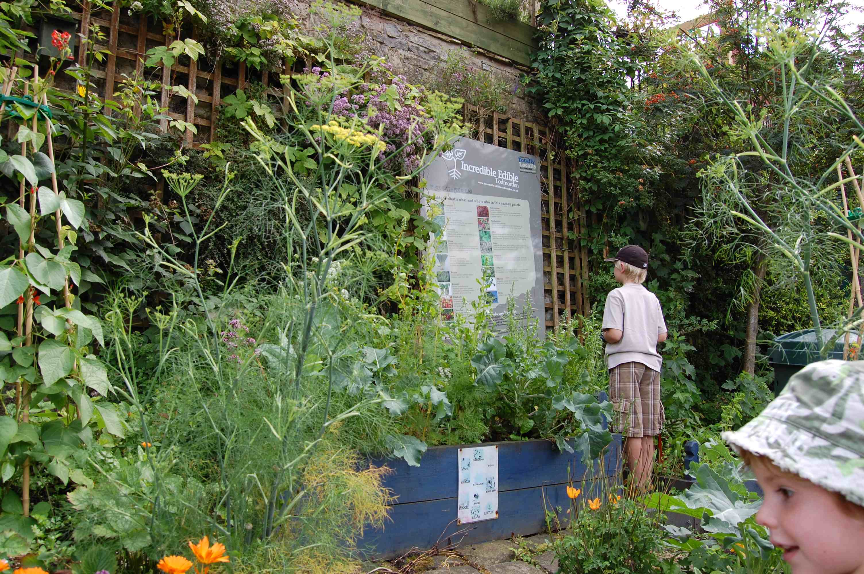 Once a front garden this space is a beautiful fully edible garden for
