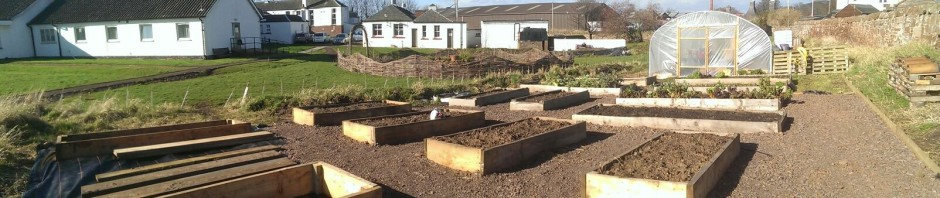 Belhaven Community Garden April 2015 update