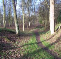 Local paths have been repaired and upgraded to allow villagers to enjoy access along the river Tyne and other parts of the village.