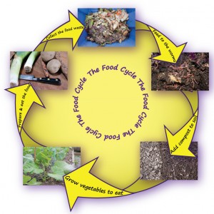 The closed loop of food production